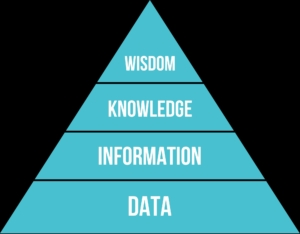 DIKW Piramide gestione dato